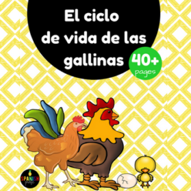 Chicken Life Cycle in Spanish (Las gallinas, gallos y pollitos)